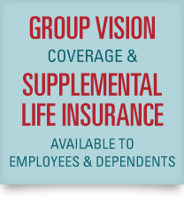 Unidev Vision and Life Insurance